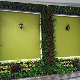 Tường xanh Cty Phát Triển Nhà Thế Giới- 04/2016